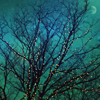magical night Art Print by Sylvia Cook Photography | Society6
