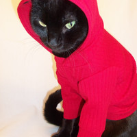 CoolCats Knit Cat Hoodie  Several colors available
