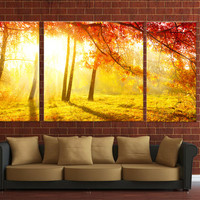 3 panels Framed canvas print, ready to hang on wall, autumn wood