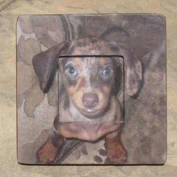"Personalized Dog Picture Frame -  The Original & Unique ""Picture in Picture"" Custom Pet Photo Frame 8"" x 8"""