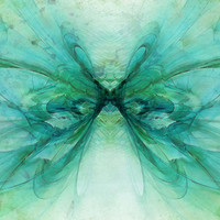 Butterfly Blue Art Print by Ally Coxon