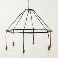 Halo Chandelier by Roost Black One Size Lighting