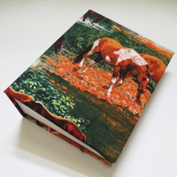 Paint horse photo album 100 4x6 photos.