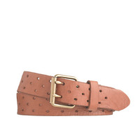 J.Crew Womens Perforated-Dot Leather Belt