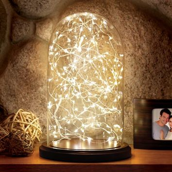 Loft Living Cloche with 20-Foot LED String Lights