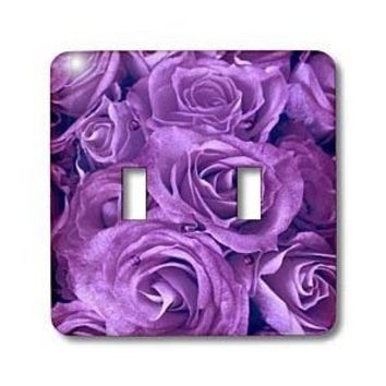 3dRose lsp_29896_2 Close Up Scene Of Dreamy Rich Purple Roses Double Toggle Switch