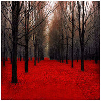 Red Forest print fairy tale inspired Black and red by Raceytay
