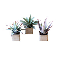 Hip To Be Square Plant Pots - Set of 3