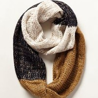 Northern Flicker Infinity Scarf by Anthropologie Black & White One Size Scarves