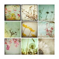 Mod Meadow Collection  Nine 4x4 Fine Art by Maleah Torney on Etsy