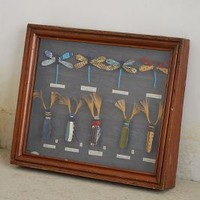 Found In Paris: Natural Wonders Shadow Box by Anthropologie Assorted One Size Decor