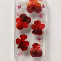 Pressed Violas iPhone 5 Case by Anthropologie Red Motif One Size Jewelry