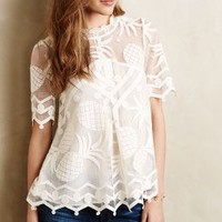 Pina Lace Top by HD in Paris White