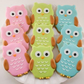 Owl Sugar Cookie Favors 24 Favors bagged and bowed by TSCookies