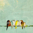 We Are the World 8x10 baby birds on wire print by enrouge on Etsy