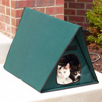 The Only Multiple-Cat Outdoor Heated Shelter
