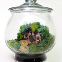 Movie Miniatures: The Shire Lord of the Rings Terrarium