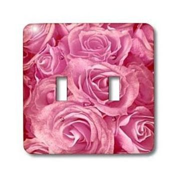 3dRose lsp_29891_2 Close Up Scene of Dreamy Soft Pink Roses Double Toggle Switch