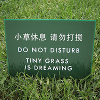 Funny Sign Cute Lawn Sign Keep off the Grass Sign Yard by SignFail