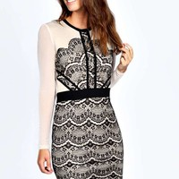 Boutique Lilly Eyelash Lace Mesh Sleeve Bodycon Dress