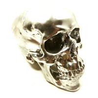 silver skull head, chrome, skulls, metallic silver decor, steampunk, tribal decor, anatomy, ultra modern