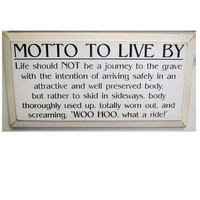 Painted Wooden primitive rustic sign Fun/Funny Motto to Live By