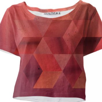Shades of red crop top created by duckyb | Print All Over Me