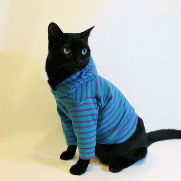 CoolCats Teal and Purple Striped Cat Hoodie