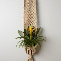 Macrame Plant Hanger by Anthropologie Neutral One Size Garden