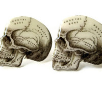 Cufflinks Anatomical Skull Cuff Links Anatomy Diagram Silver