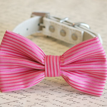 Hot Pink Dog Bow Tie, Pet Wedding accessory, Pink wedding idea, Dog Bow tie, Pink Lovers, Dog Birthday Gift