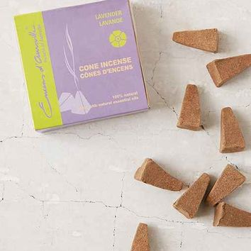 Maroma Encens D'Auroville Cone Incense-