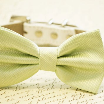 Light green Dog Bow Tie ,Wedding Dog Collar-Green wedding accessory. High quality leather and Fabric, Pistachios
