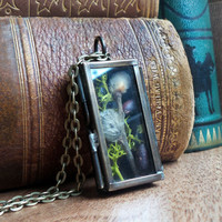 Shadow box terrarium necklace, pussy willow and moss necklace, brass locket necklace, woodland necklace eco-friendly organic jewelry