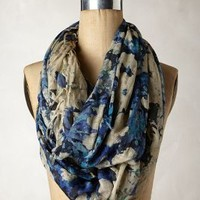 Fringed Rill Scarf by Anthropologie Blue Motif One Size Scarves
