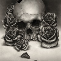 """""""Skull And Roses"""" - Art Print by Rodger Pister"""