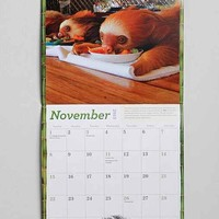 Hangin' With Sloths 2015 Calendar- Brown One