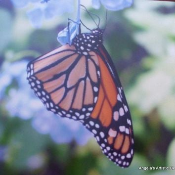 Butterfly Note Cards, Blank, Mother's Day, Spring