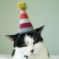 pet hat party by xmoonbloom on Etsy