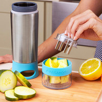 Aqua Zinger Fruit Infusing Water Bottle by Zing Anything