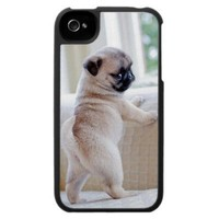 Pug Puppy Iphone 4/4s Case from Zazzle.com