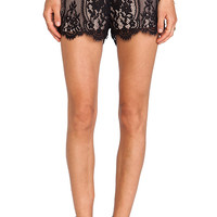 Alexis Toulouse Lace Shorts in Black