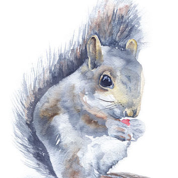 Squirrel Watercolor Note Card Set by SusanWindsor on Etsy