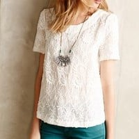 Embroidered Lace Tee by Meadow Rue