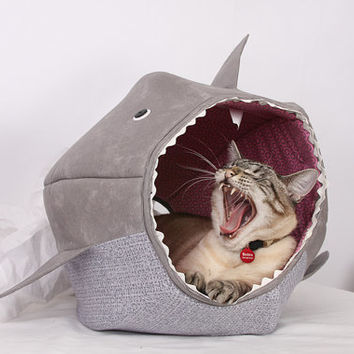 Cat Ball for Shark Week Feed Your Kitty to the Fishes