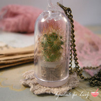 1 Pc REAL CACTUS PLANT Red orange terrarium apothecary terrarium supplies Necklace Chain Included Woodland