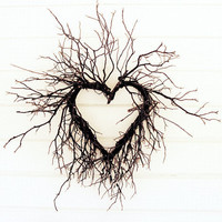 SALE Wild Heart Tree branches photography love by honeytree