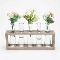 Laboratory Flower Vases- Clear One