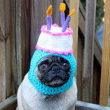 Happy Happy Birthday Cake Dog Hat / Made To Order by Sweethoots