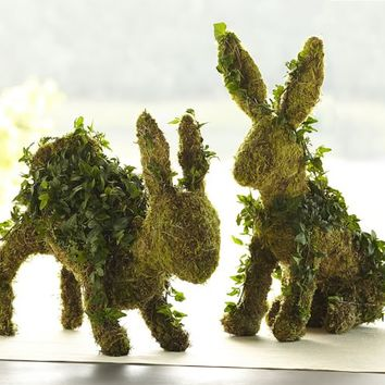 LIVE IVY BUNNY TOPIARY